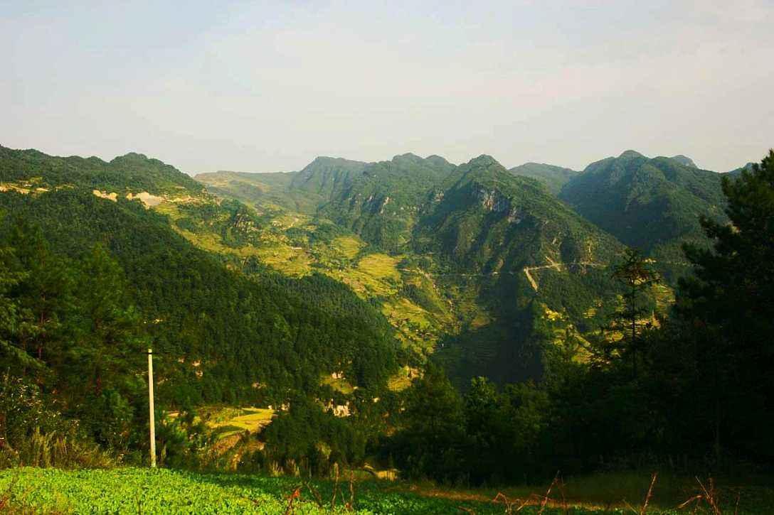 话题列表 话题详情  石林镇位于淳安县的东大门,北面临湖,东邻建德,是图片
